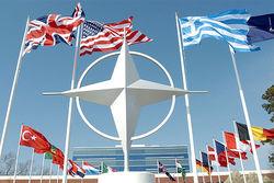 Киев ожидает «конкретной помощи» от НАТО для борьбы с террористами – СМИ