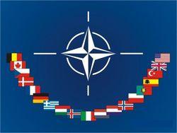 В 2014 году Украина проведет восемь учений с НАТО на своей территории
