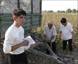 В Узбекистане на людях избит хоким райцентра Ташкентской области