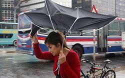 В США объявили чрезвычайное положение из-за урагана «Хоакин»