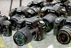 12 популярных брендов фотоаппаратов августа 2014г. в Интернете