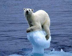 Уровень Мирового океана стал быстро подниматься – ученые