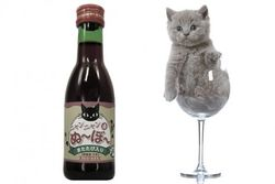Новинки бизнеса: в Японии придумали вино для кошек