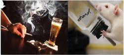 Ученые объяснили, почему курильщиков сильнее тянет к алкоголю, чем некурящих
