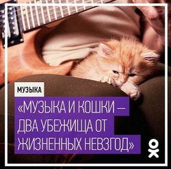 «Одноклассники» поздравили пользователей ОК с Международным днем музыки