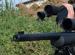 Правительство Украины разрешит применять оружие бойцам ВВ в ходе уличных акций – СМИ