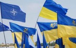 НАТО и Украина обзавелись планом защиты при нападении России