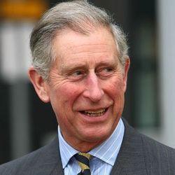 Хочет ли принц Чарльз стать королем Великобритании и Северной Ирландии