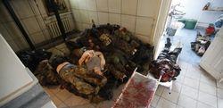 Желание кровной мести за убитых в Украине противоречит исламу – имамы Чечни