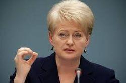 Литва готовит персональные санкции против граждан РФ из-за Украины