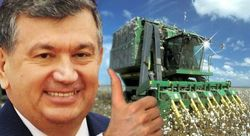 СМИ Узбекистана: заявления о механизации сбора хлопка - блеф для иностранцев