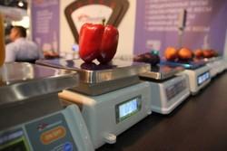 Узбекистан подписал крупные контракты на поставку овощей и фруктов в ЕС