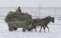 Эксперты критикуют аномальную аграрную структуру в России
