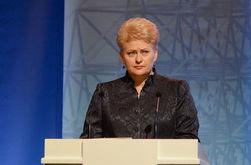 Минские соглашения слабые из-за неопределенности с границей – Грибаускайте