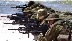Совместные учения с НАТО для Украины важны не менее иностранного оружия