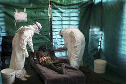 Мир напуган: лихорадка «Эбола» унесла жизни почти 1 тысячи человек