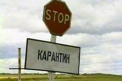 В Кыргызстане снят карантин по бубонной чуме