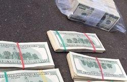 Коррупция в Налоговой обошлась бюджету в 5 миллиардов за 1 месяц
