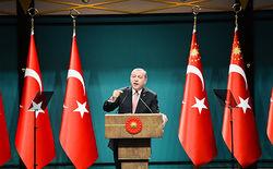 Эрдоган опасается нового переворота в Турции