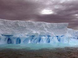 Ученые : в Антарктике стремительно тают ледники