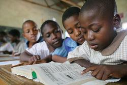 В Зимбабве закрыли школы из-за нашествия гоблинов