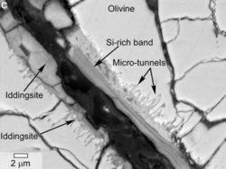 Ученые нашли следы биогенетических процессов внутри марсианского метеорита