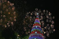 Новогоднюю елку в центре Баку уничтожили исламские радикалы