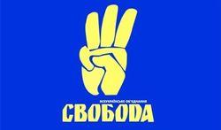 """""""Свобода"""" создаст большинство в президентской Украине, - нардеп Швайка"""