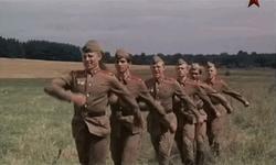Москва решила наказать граждан Литвы, «откосивших» от Советской армии