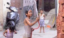 В Индии из-за аномальной жары погибли 335 человек