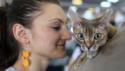 Россияне тратят на домашних животных триллион рублей и не экономят на них