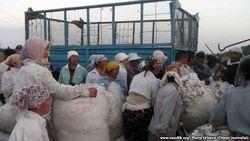 Министерство труда США: Правительство Узбекистана все еще использует принудительный труд