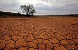 ООН оценила потери мировой экономики от глобального потепления