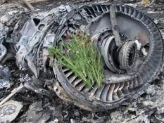 Киев готов передать координацию расследования сбитого Боинга Западу