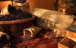 Названы самые популярные бренды кофе и продавцы в Интернете