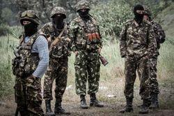 «Айдар» ликвидировал группировку боевиков «Восток» и пленил их главаря