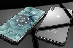 iPhone 8 ознаменует 10-летие появления айфонов