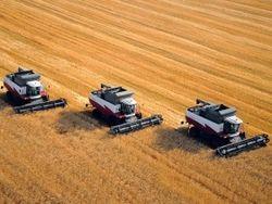 Украина вошла в тройку мировых экспортеров зерна