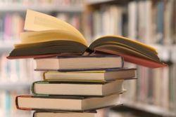 В Беларуси назвали размеры платы за пользование школьными учебниками