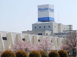 Продукция Kanebo срочно снимается с продажи – причины