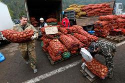 МЭР подняло прогноз продуктовой инфляции в РФ в 2014 году до 12-13 процентов