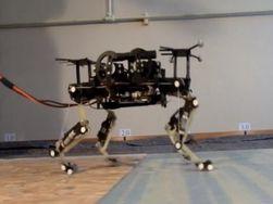 """Ученые создали """"робота-кошку"""""""