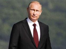 «Слезть с пальмы на землю» советуют Путину в Германии