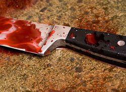 В США сын тяжело ранил ножом своего отца-сенатора и покончил с собой