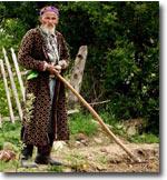 Узбекистан: фермерам-должникам запретили отказываться от земельных наделов - причины