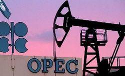 Цена нефтяной корзины ОПЕК выросла на рекордные 2,5%