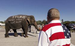 Лидеры республиканцев ищут способы выбросить Трампа за борт президентской гонки