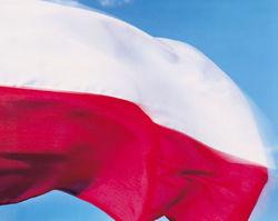С 1 мая украинцам упростят ВНЖ и проживание в Польше