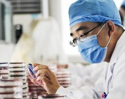 """В Китае процветает """"черный рынок"""" научных статей – Science"""