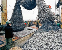 Россия положила глаз на океанский рыболовный флот Украины
